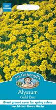 Mr Fothergills - Pictorial Packet - Flower - Alyssum Gold Dust - 150 Seeds
