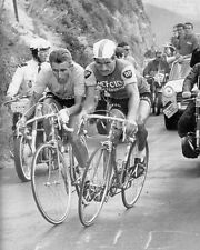 Jacques Anquetil Raymond Poulidor Cycling Greats Battle 10x8 Photo