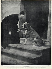 SAINT BERNARD LIFE SAVING DOG AND MONASTRY PRIOR OLD ORIGINAL 1934 DOG PRINT