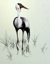 Bird MALAWI WADER WWF Bird PANEL PAD Premier Day 1° FDC 497