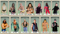 """2021 LJACards """"Wrestling Stars"""" History of Wrestling Trading Cards ACEO"""