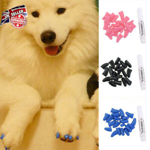20Pcs Cat Pet Nail Caps Cover Kitten Claws Paw Off Control Lovely Soft Pet