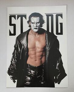 "WWF WWE Poster Print Sting WCW NWA TNA Champion Wrestler Pro Wrestling 12"" x 16"""