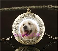 Vintage Golden Dog Photo Cabochon Glass Brass Locket Pendant Necklace