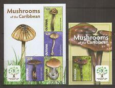 Guyana / 2011 Mushrooms of the caribbean . MNH