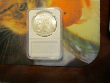 2013-p american eagle dollar