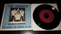 THE CRICKETS/ BUDDY HOLLY That'll Be The Day/I'm Lookin NM! 45 Brunswick Reissue