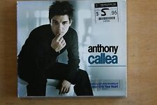 Anthony Callea  ‎– Anthony Callea    (C352)