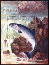 Рыбы и подводный мир