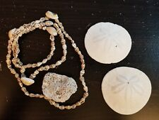Sand Dollars, Shell Necklace, Rock Coral