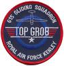 N.615 Volunteer Gliding Squadrone Vgs Raf Top Grob Patch Ricamato