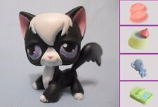 Littlest Pet Shop Cat Angora No Number and Free Accessory Authentic Lps