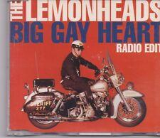 The Lemonheads-Big Gay Heart cd maxi single