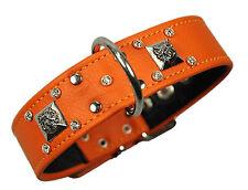"LEDASS92 Halsband ""4LION ""Orange  30-38cm Hund Lederhalsband Nietenhalsband Neu"