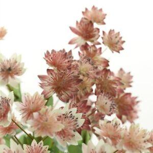 Snow Lotus Artificial Flower Branch for DIY Home Floral Arrangement Accessories