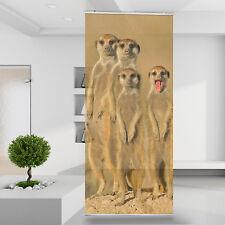 Raumteiler | Vorhang Gardine Erdmännchen Tiere Meerkat Family Afrika Natur 13