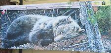 "Bear Sleeping 48"" x 20"" Canvas print On A Wooden Stretcher Frame(h)"