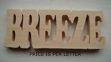 HORSE NAME STABLE DOOR PLAQUE/SIGN (priced per letter)