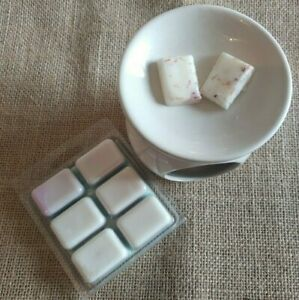 SWEET FIG & MINT  WAX MELTS Plastic Clamshell Handmade scented ECO SOY 95-100g