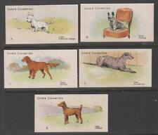 More details for cigarette cards cope 1912 dogs of the world - (5 cards) 16-20