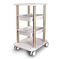 Salon Hairdresser Drawers Beauty Storage Trolley Colouring Hair ABS Roller Cart