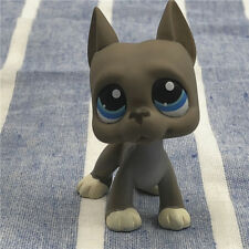 Littlest Pet Shop LPS #184Figure Great Dane Dog Blue Eyes Rare Kids Girl Toys