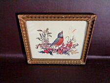 Small Vintage Framed Bird Print (Robin) By Beckett (Cat.#A1010)