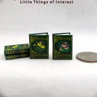 FAMILIAR WILD FLOWERS BOOK SET Illustrated Miniature Dollhouse 1:12 Scale Books