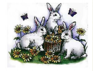 NORTHWOODS THE BUNNY BUNCH RUBBER STAMP