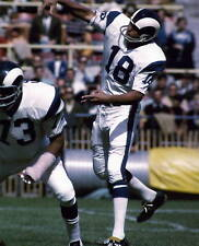 ROMAN GABRIEL LOS ANGELES RAMS  8X10 SPORTS PHOTO (I)