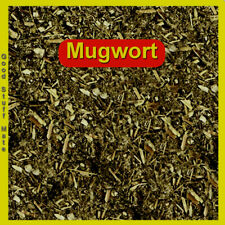 ORGANIC MUGWORT TEA - Artemisia vulgaris - DRIED HERB AUSTRALIAN GROWN FREE POST