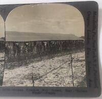 WWI Germans Prisoners Keystone Stereoview