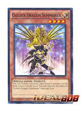 YUGIOH x 3 Golden Dragon Summoner - Common - YS14-EN016 (1st Edition) Near Mint