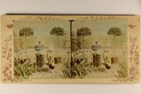 Germania Gatto Dropkick Composizione Artistico Foto Stereo Vintage Citrato c1900