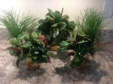 Aquarium Plant w/Stone Base Small Display Also Good in Reptile Terrarium