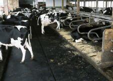 Heavy Duty Rubber Matting. Milk Parlour/ Cow Matting