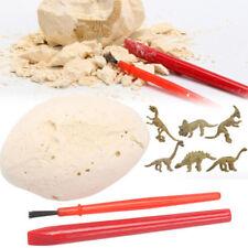 Dinosaur Egg Excavation Kit Archaeology Dig Up HistorySkeleton Kid Toy Gifts NTH