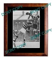 MICK TWOMEY COLLINGWOOD FC 1953 G/FINAL A3 SPECKY PRINT