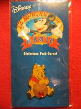 Disney 12 Months of Magic Pin Birthstone Pooh-Garnet (January) - New on Card