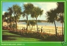 "CHANNEL ISLANDS ""Brelades Palms CI"" old postcard P/C PC post card"