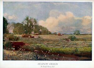 90+ yr Old Vintage DAVID MURRAY Art - MEADOW SWEETS Farming Landscape 12x8 Print