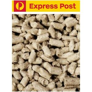Shrimp Snow Soy Husk Pellets Food Bulk 500g Bristlenose pleco soya Mushroom