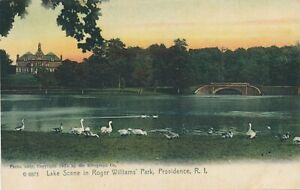 PROVIDENCE RI - Roger Williams Park Lake Scene Rotograph Postcard-udb (pre 1908)