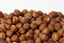 AIVA - HAZELNUTS / FILBERTS,  Raw, No Shell, PREMIUM GRADE QUALITY