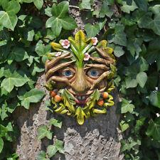 Cheeky Peeper Treant Face Wall Plaque Garden Greenman Decorative Gift Deco 80312