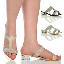Evening Slip On, Mules Synthetic Shoes for Women