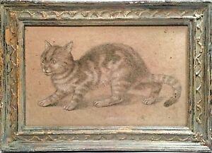 SIGNED CAT STUDY FIGURE PORTRAIT DRAWING STEPHANIE HOPPEN GALLERY LONDON ENGLAND