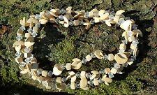 Media Luna de Madera Coco Collar Estilo Boho Tribal/Crema de longitud 78cm