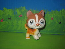 Lps littlest pet shop #341 white and brown husky
