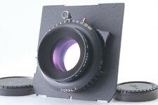 [TOP MINT] Nikon Nikkor M 300mm f/9 Copal 1 Large Format Lens 8x10 From Japan